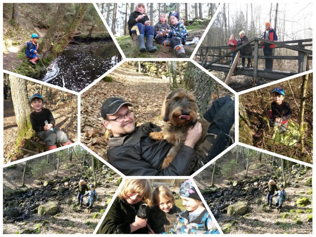 """Att jaga """"skatter"""" i skogen är ett vinnande koncept, här - påskäggjakt."""