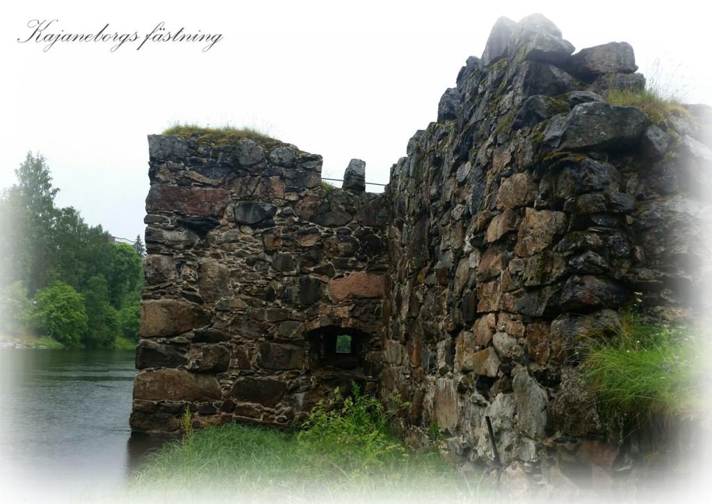 kajaneborg-cia