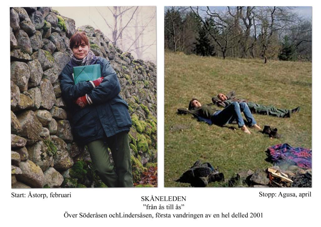 Vandring delled ÅÅ 2001